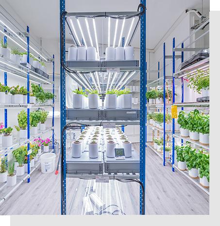 Solutions LED pour éclairage commerce ou horticulture - CisLED